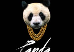 Desiigner – Panda Lyrics
