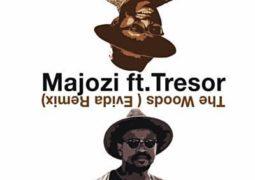 Lyrics: Majozi –  The Woods Lyrics Ft Trésor