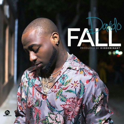 davido - fall lyrics