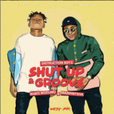 Distruction Boyz – Shut Up & Groove Lyrics ft. Babes Wodumo & Mampintsha