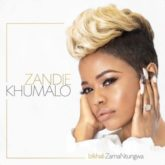 Zandie Khumalo – Nami Ngiyali'funa Lyrics