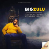 Big Zulu – Vuma Dlozi Lyrics